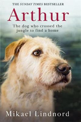 Picture of Arthur: The Dog Who Crossed the Jungle to Find a Home