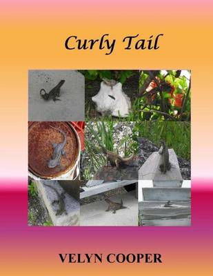 Picture of Curly Tail
