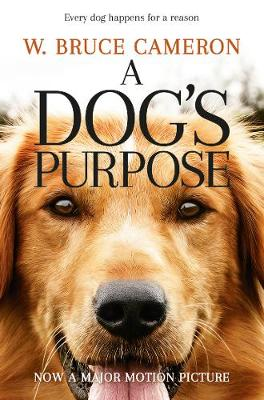Picture of A Dog's Purpose