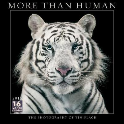 Picture of More Than Human 2018 Wall Calendar: The Photography of Tim Flach