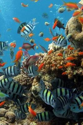 Picture of Reef Fishes (Journal / Notebook)
