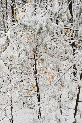 Picture of Winter Journal Snowstorm Small Trees: (Notebook, Diary, Blank Book)