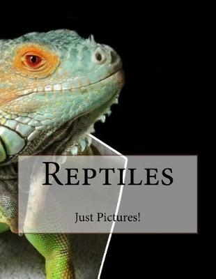 Picture of Reptiles