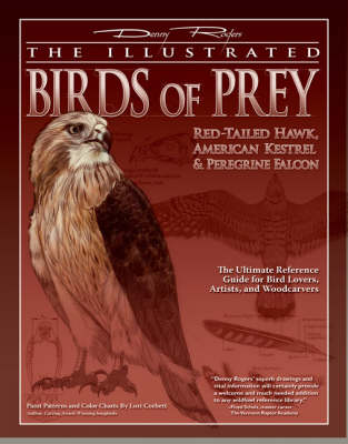Picture of The Illustrated Birds of Prey: Red Tailed Hawk, American Kestrel and Peregrine Falcon