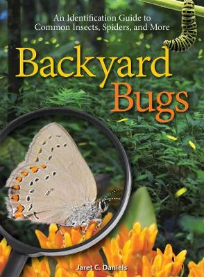 Picture of Backyard Bugs: An Identification Guide to Common Insects, Spiders, and More