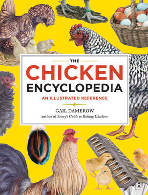 Picture of The Chicken Encyclopedia: An Illustrated Reference