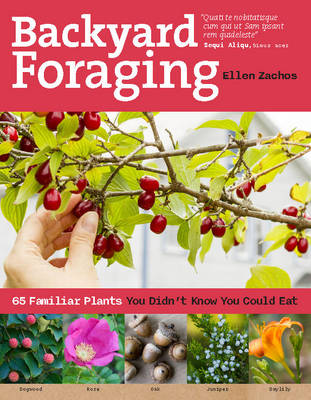 Picture of Backyard Foraging: 65 Familiar Plants You Didnt Know You Could Eat