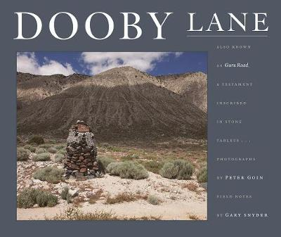 Picture of Dooby Lane: Also Known as Guru Road, a Testament Inscribed in Stone Tablets by Dewayne Williams
