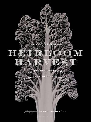 Picture of Heirloom Harvest: Modern Daguerreotypes of Historic Garden Treasures