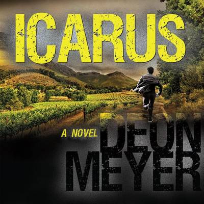 Picture of Icarus