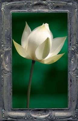 Picture of Letting the Lotus Bloom: The Expression of Soul Through Flowers