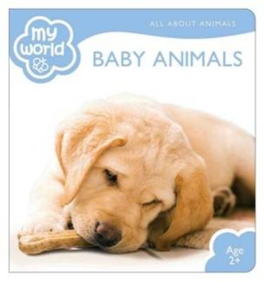 Picture of Baby Animals