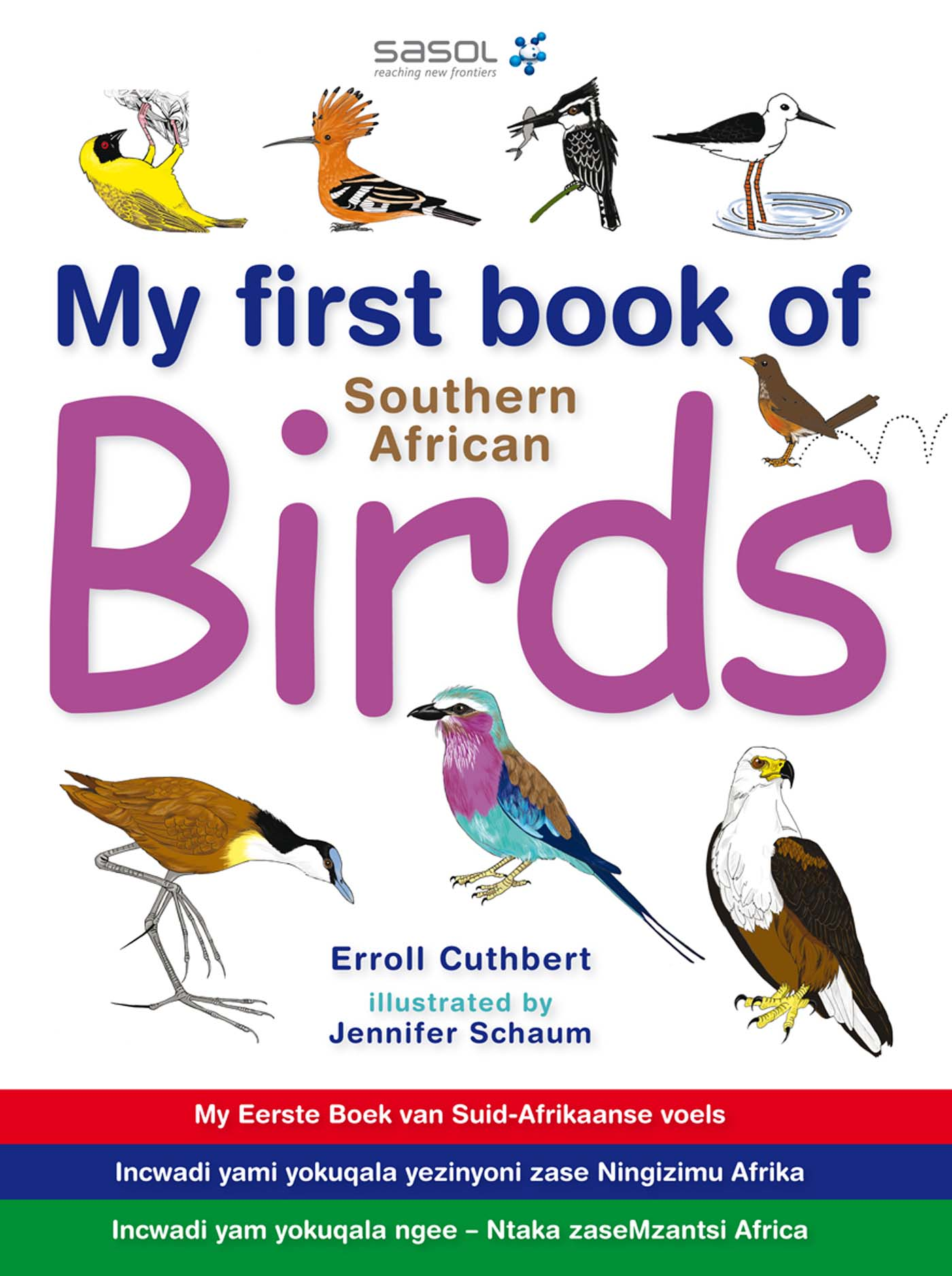 Picture of My first book of Southern African birds