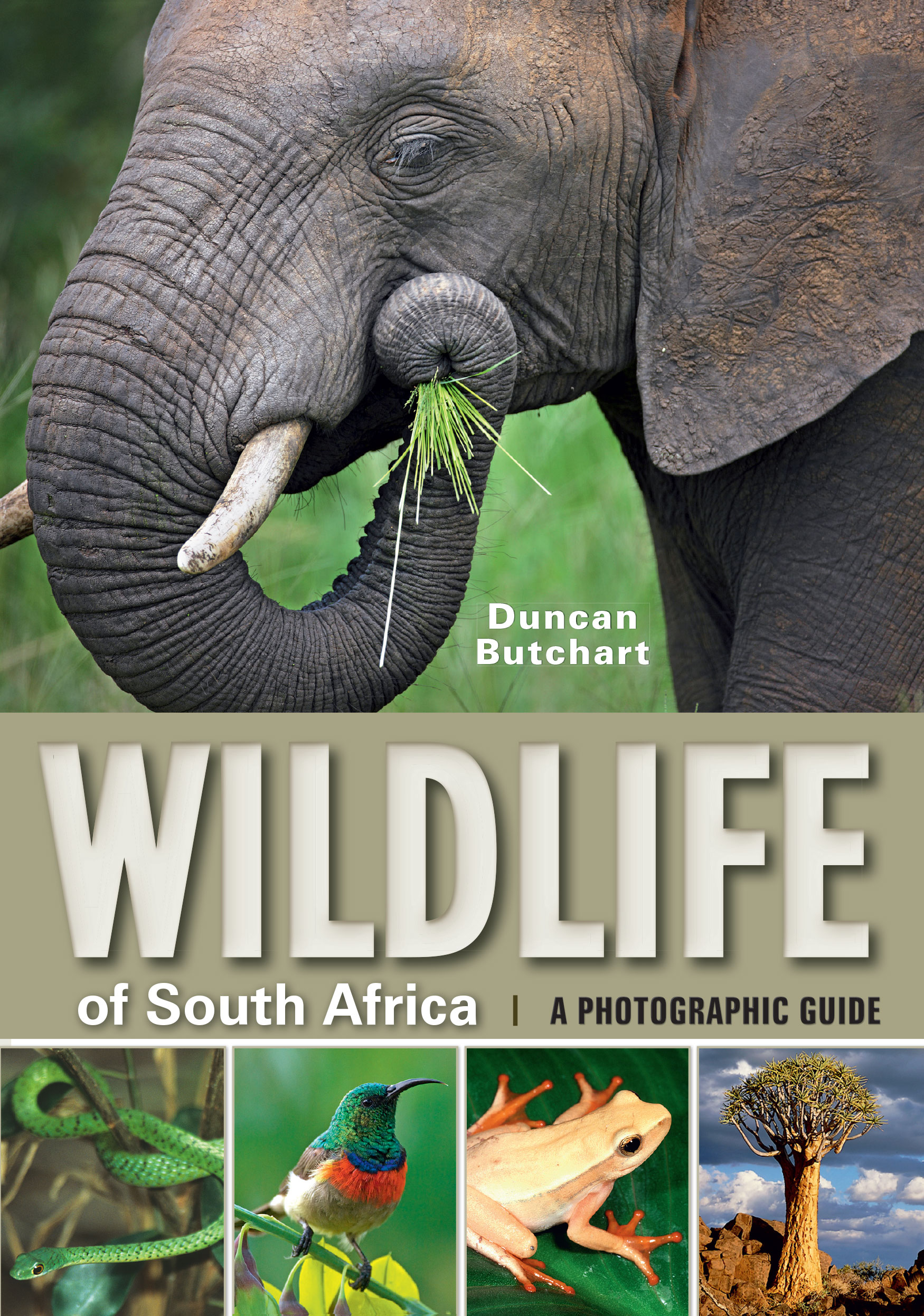 Picture of Wildlife of South Africa