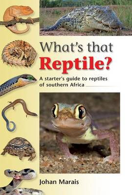 Picture of WhatÆs that reptile?