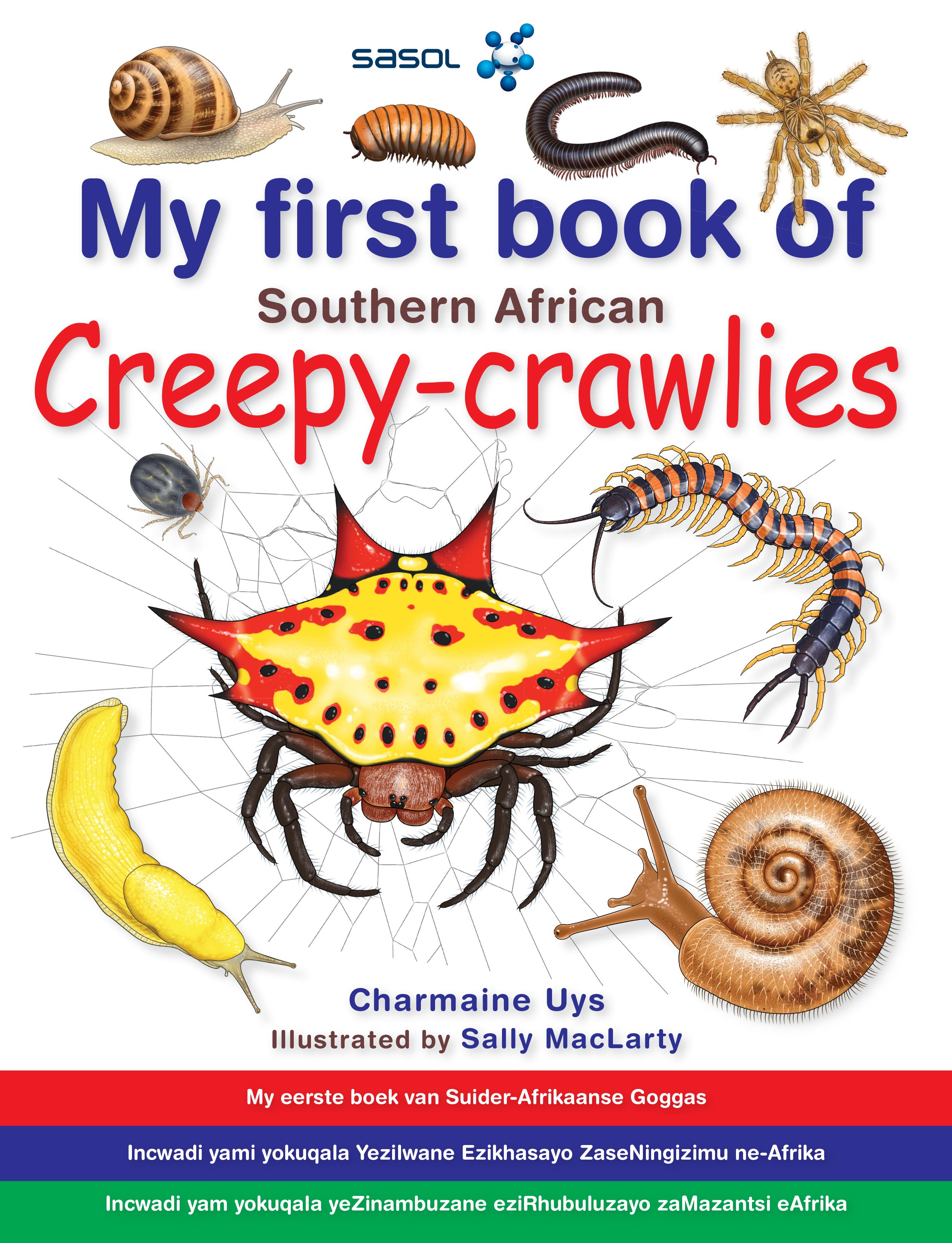 Picture of My first book of Southern African creepy-crawlies
