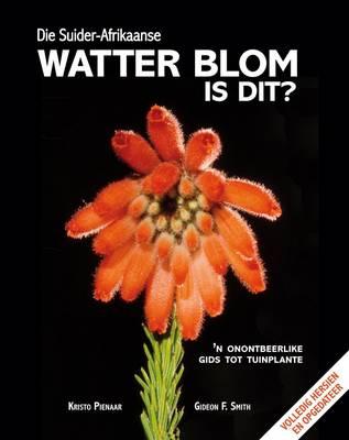 Picture of Die Suider-Afrikaanse watter blom is dit?