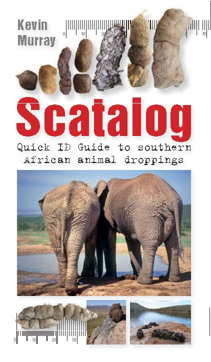Picture of Scatalog