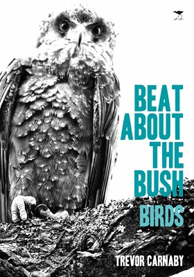 Picture of Beat about the bush Birds