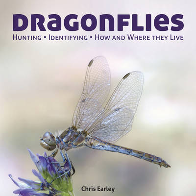 Picture of Dragonflies: Hunting - Identifying - How and Where They Live