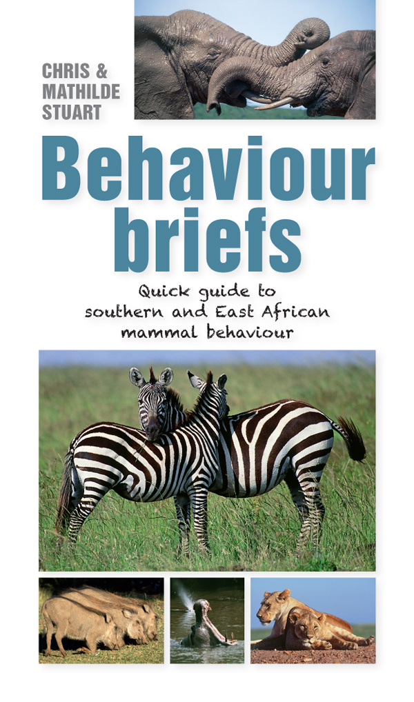 Picture of Behaviour briefs