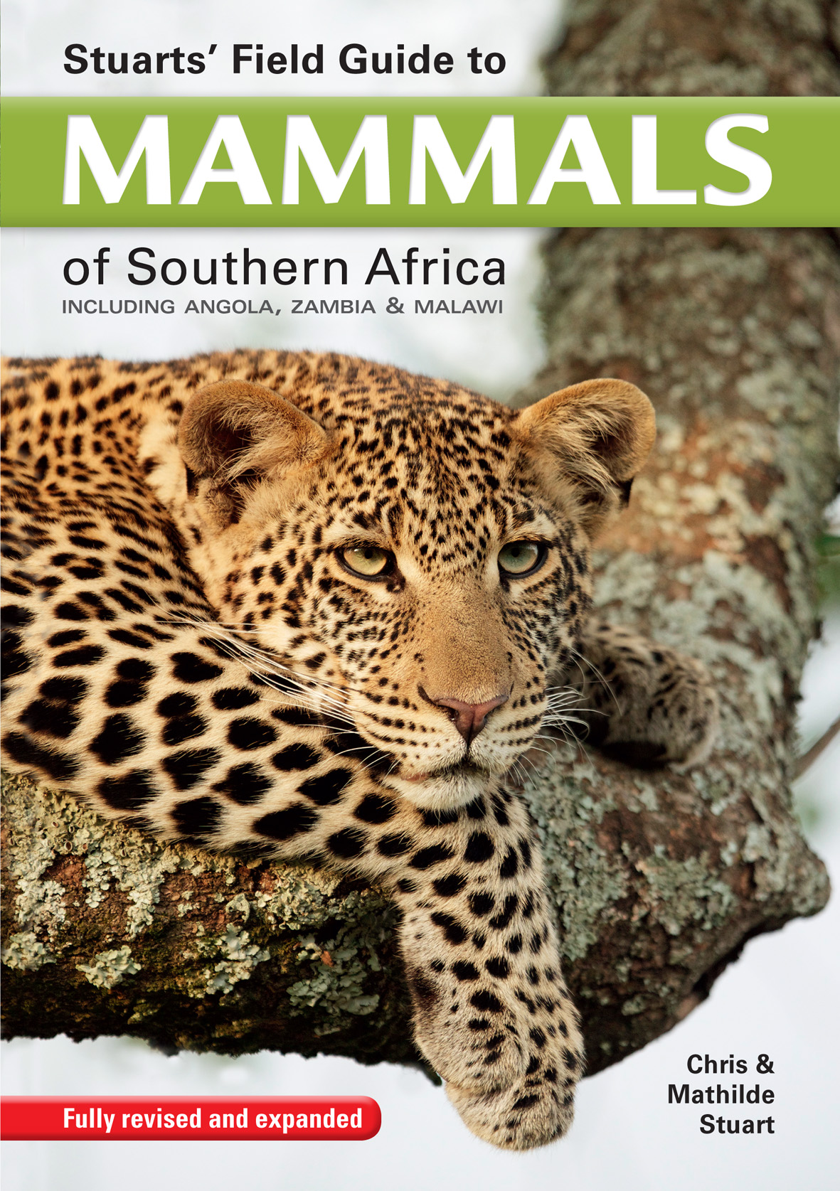 Picture of Stuart's field guide to mammals of southern Africa