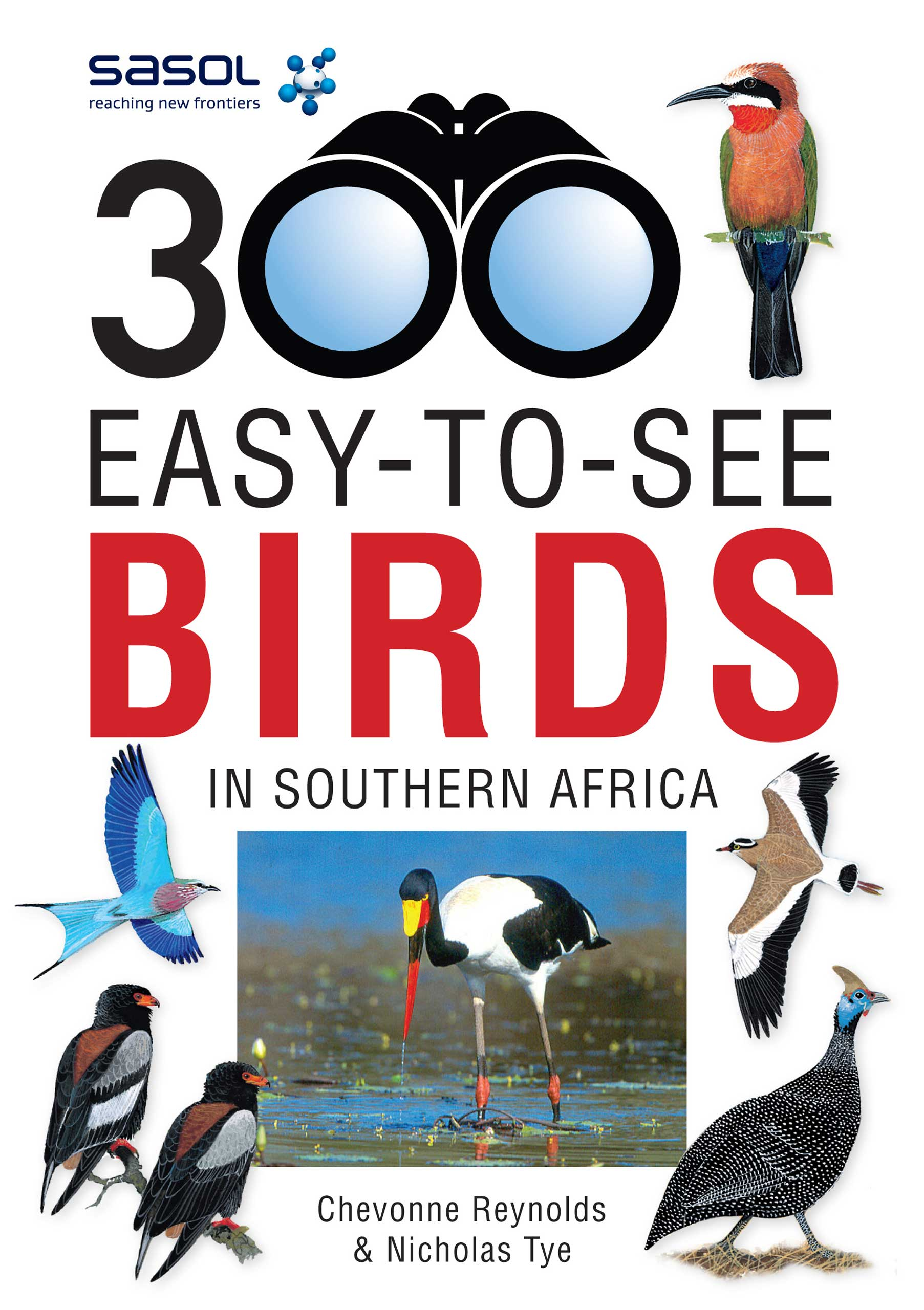 Picture of 300 Easy-to-see birds in Southern Africa