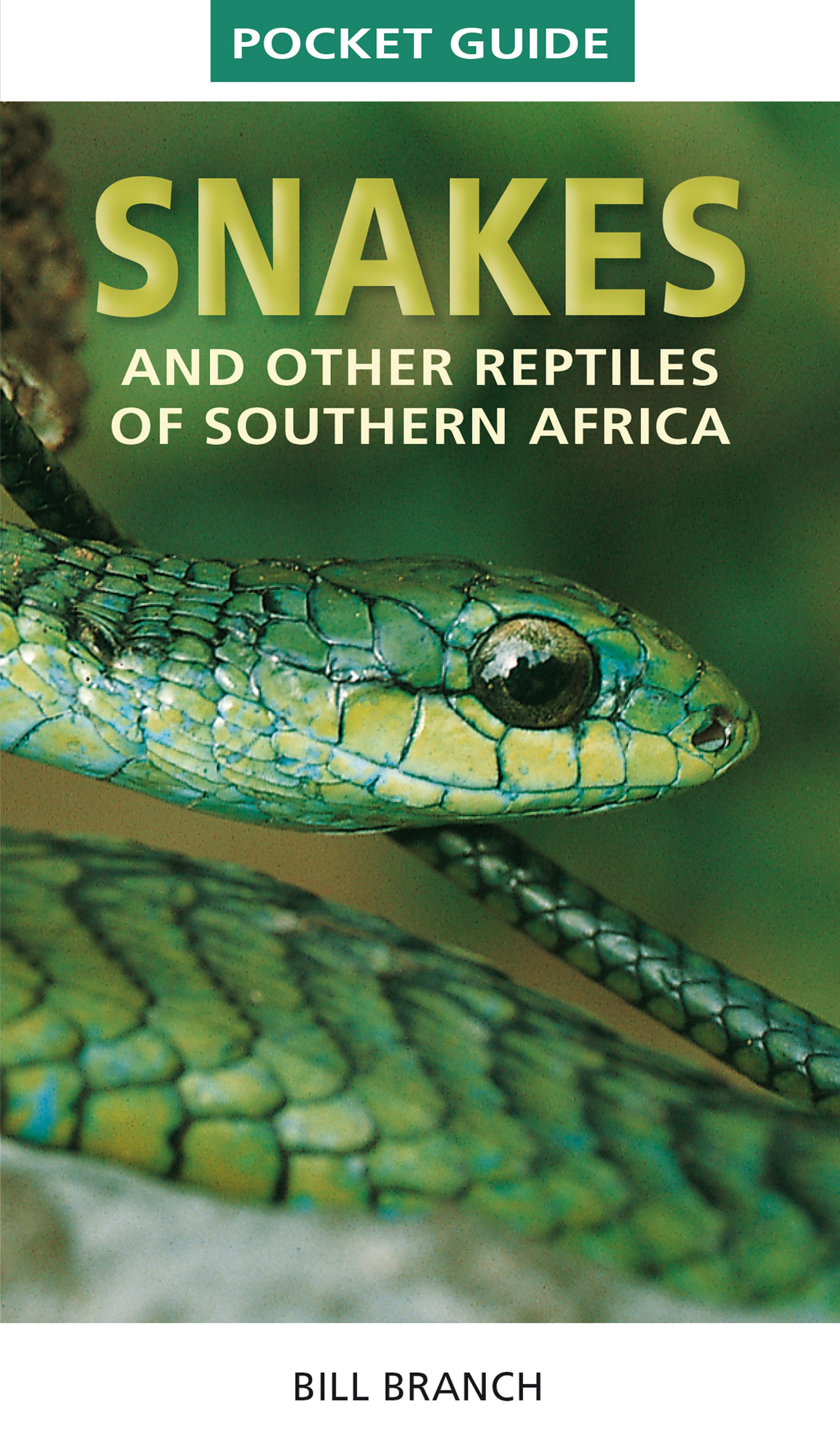 Picture of Snakes and Reptiles of Southern Africa