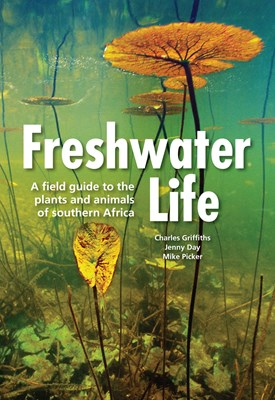 Picture of Freshwater life