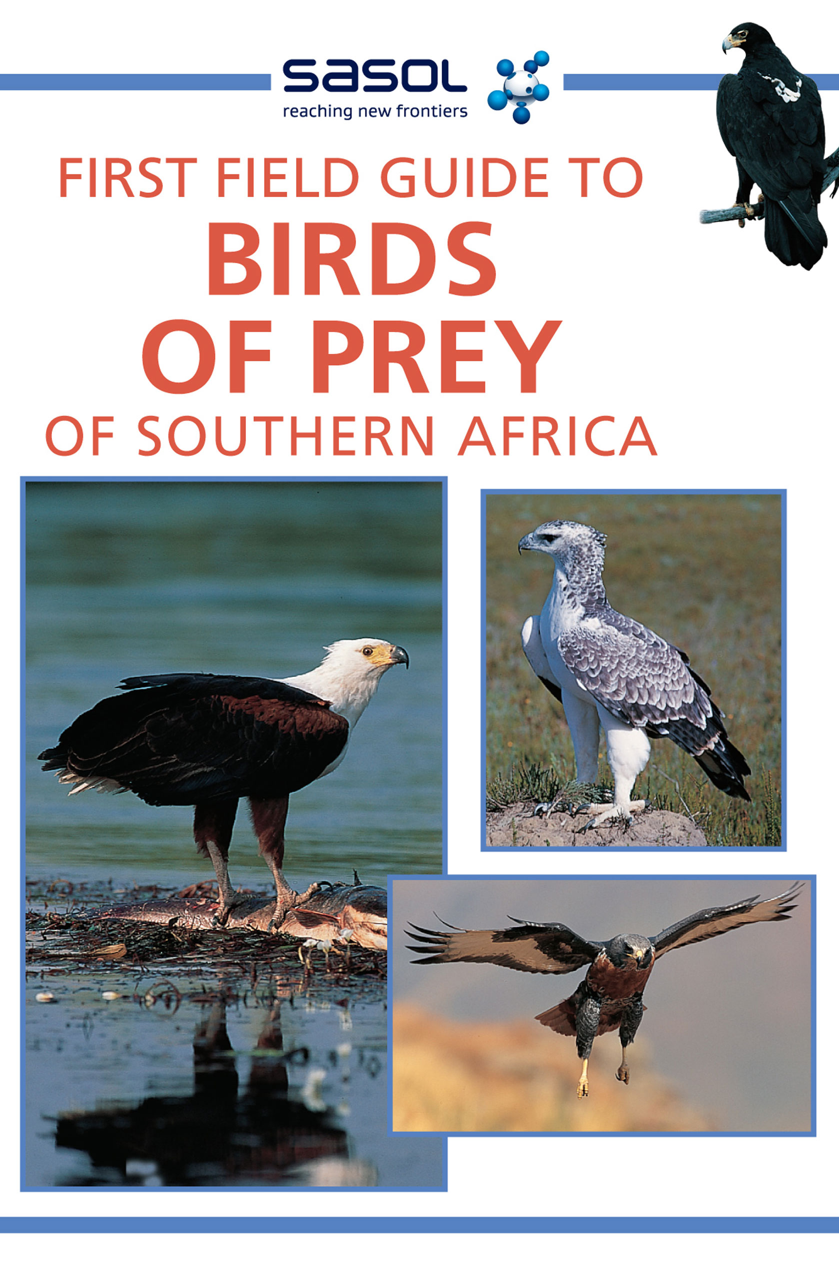 Picture of First field guide to birds of prey of Southern Africa