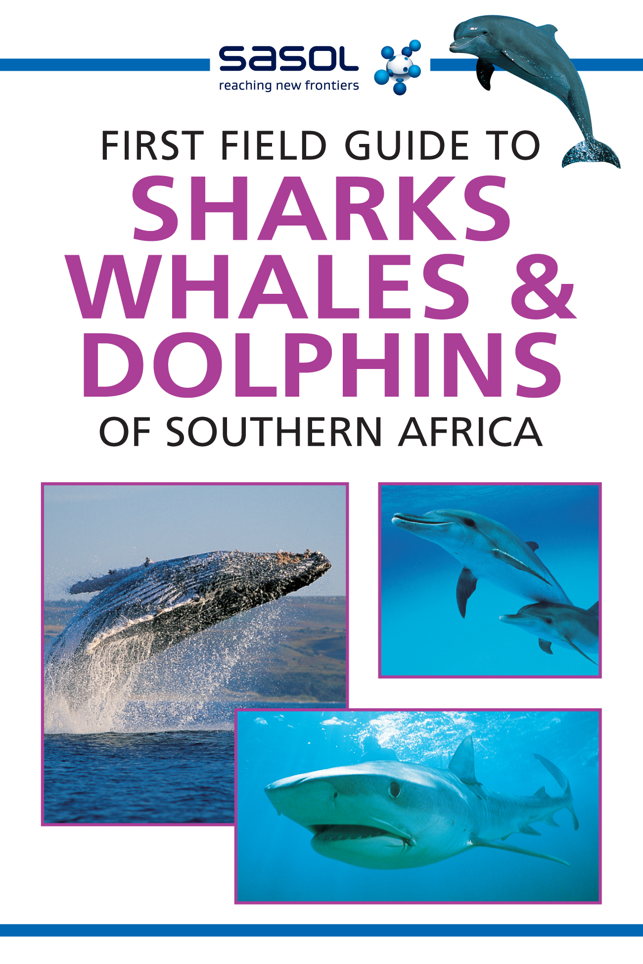 Picture of First field guide to sharks, whales and dolphins of Southern Africa