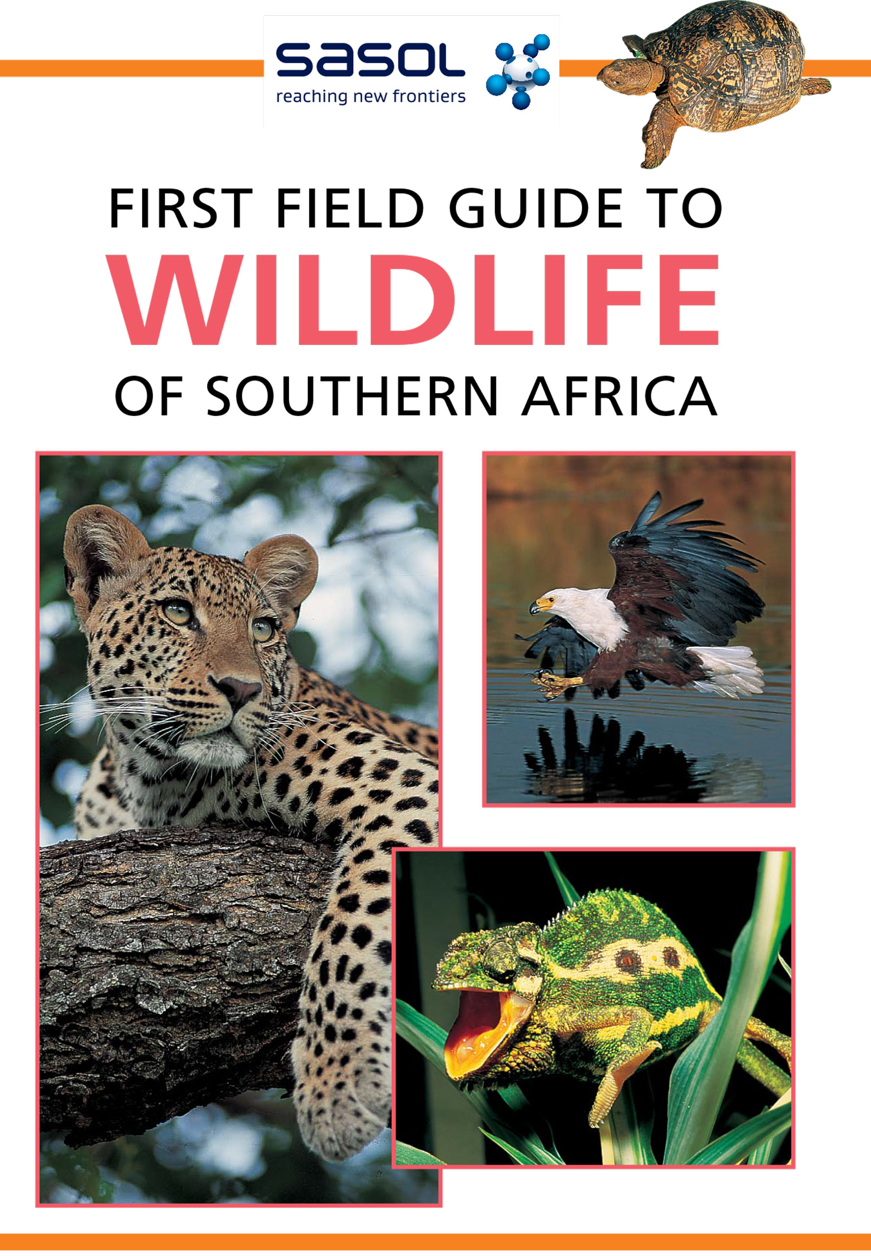Picture of First field guide to wildlife of Southern Africa