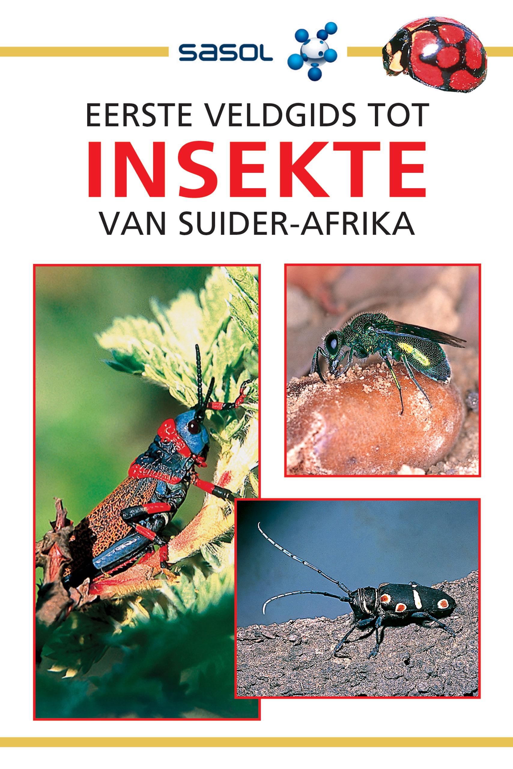 Picture of Eerste Veldgids Tot Insekte Van Suider-Afrika