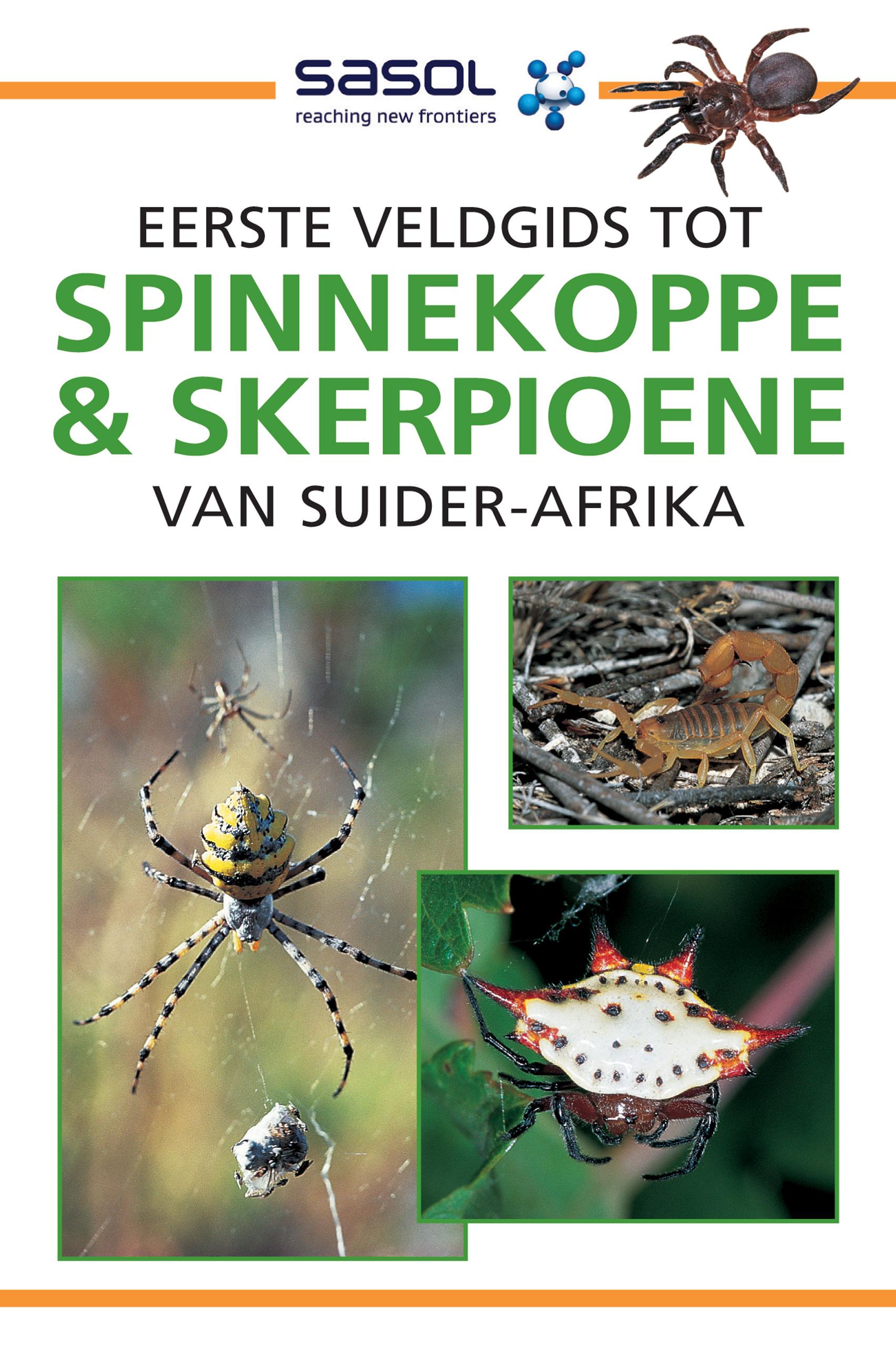 Picture of Eerste Veldgids Tot Spinnekoppe & Skerpioene Van Suider-Afrika