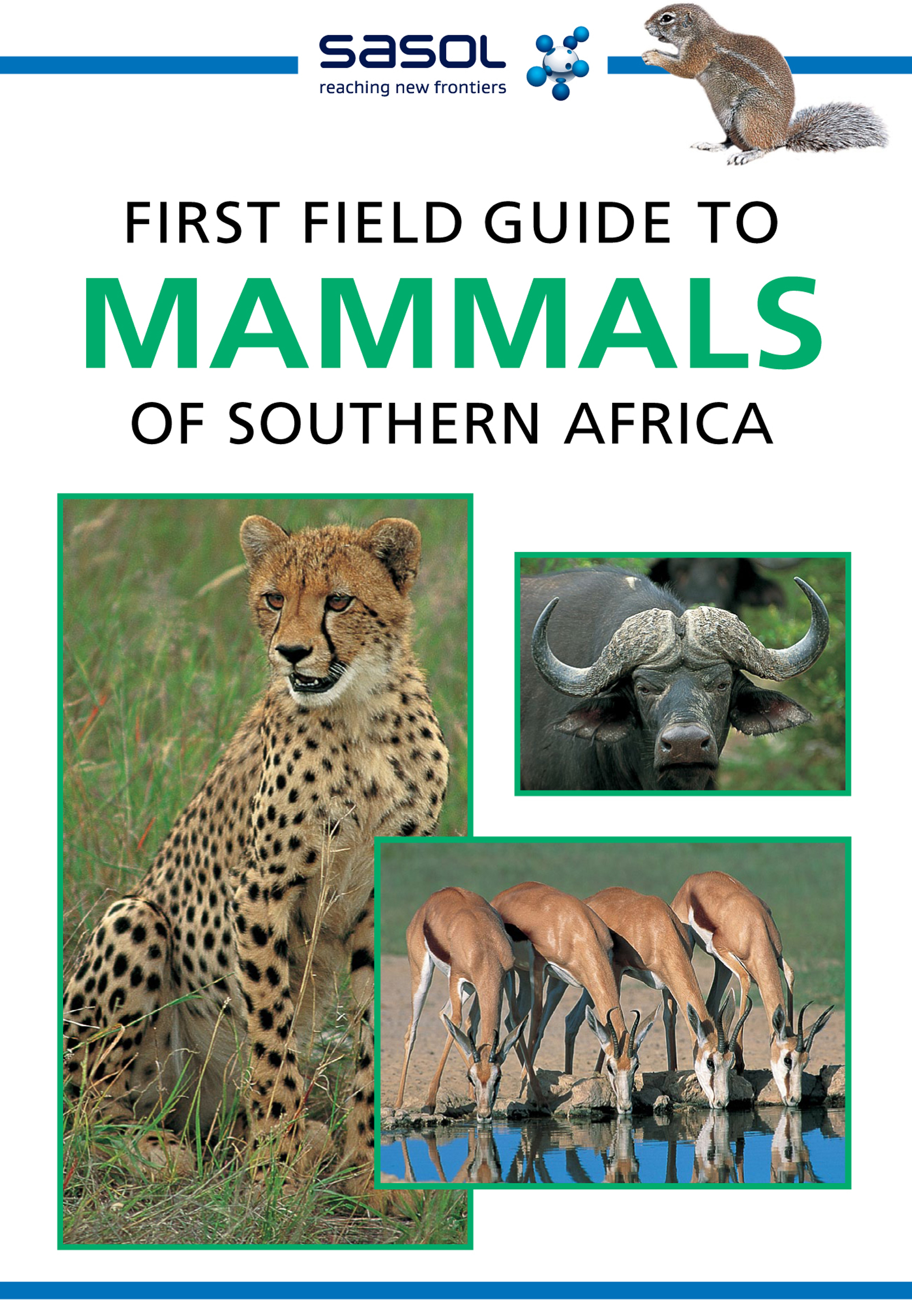 Picture of Sasol first field guide to mammals of Southern Africa
