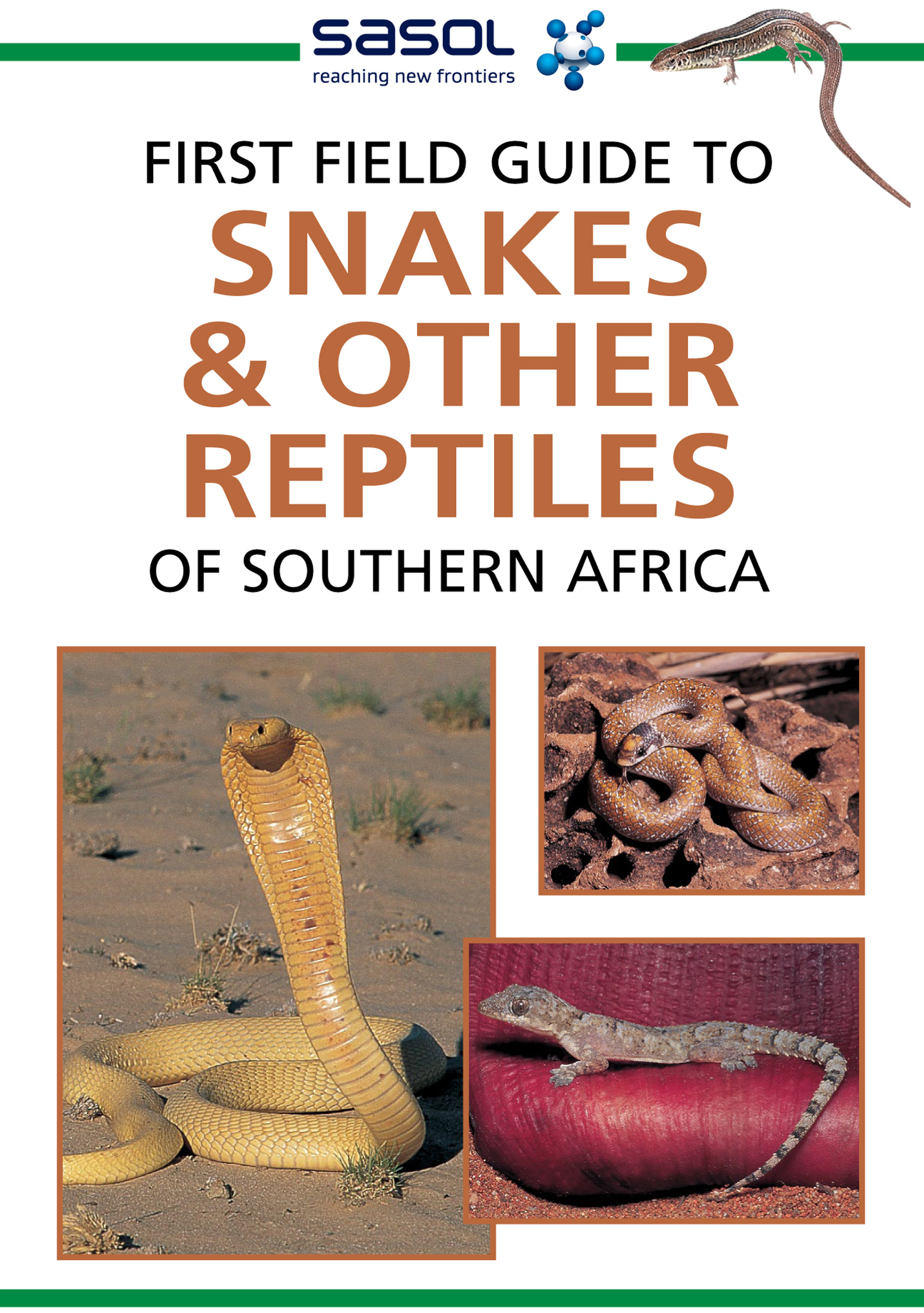 Picture of Sasol first field guide to snakes & other reptiles of Southern Africa