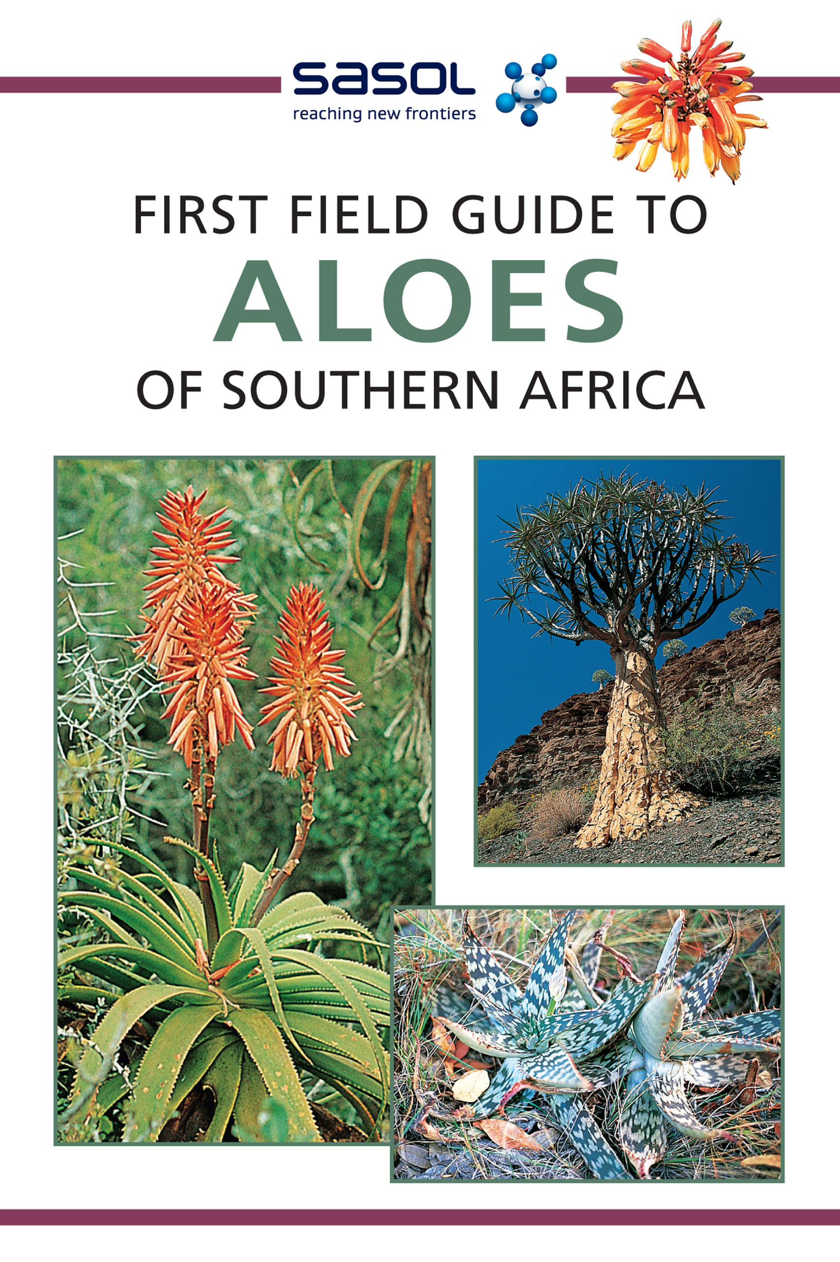 Picture of Sasol first field guide to aloes of Southern Africa