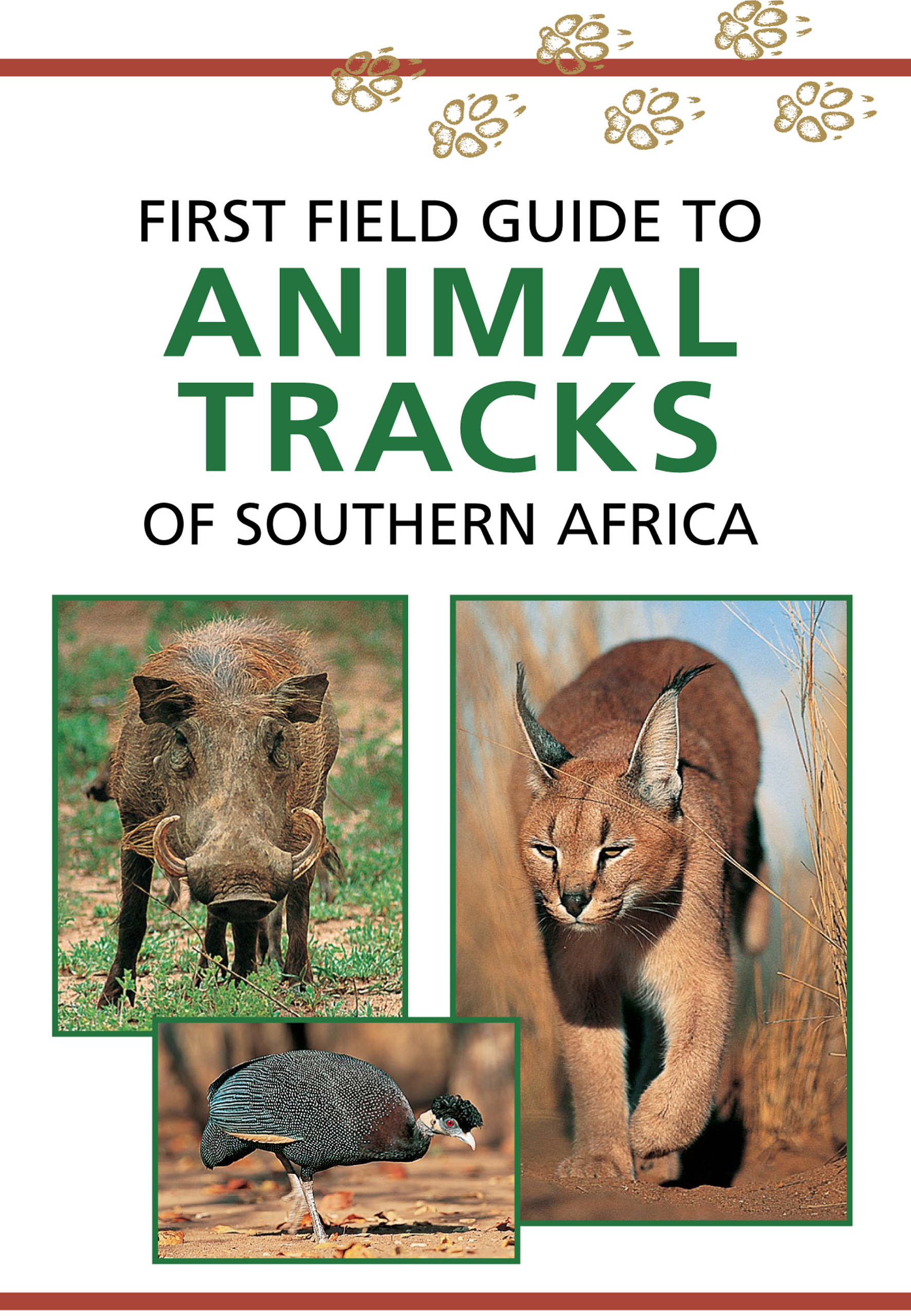 Picture of Sasol first field guide to animal tracks of Southern Africa