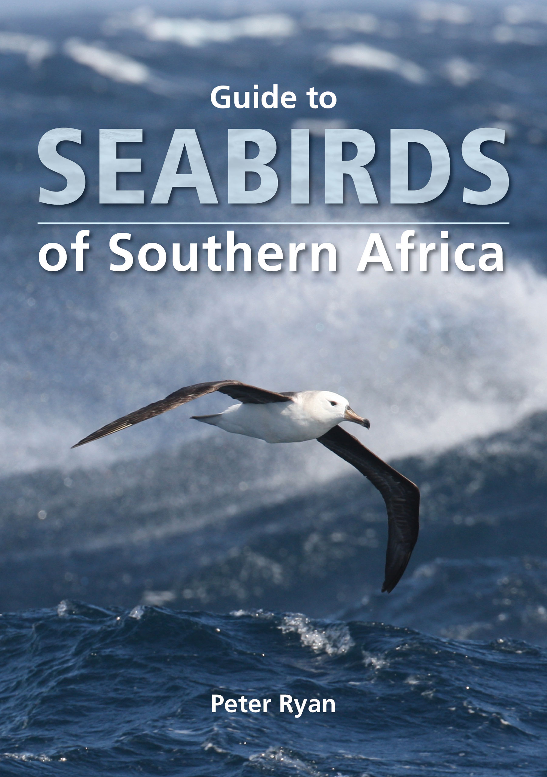 Picture of Guide to seabirds of southern Africa