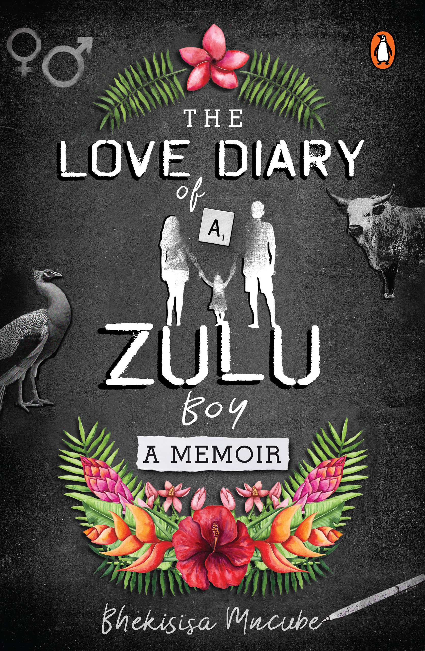 Picture of The love diary of a Zulu boy