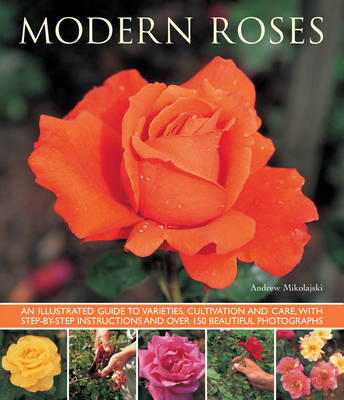 Picture of Modern Roses: An Illustrated Guide to Varieties, Cultivation and Care, with Step-by-step Instructions and Over 150 Beautiful Photographs
