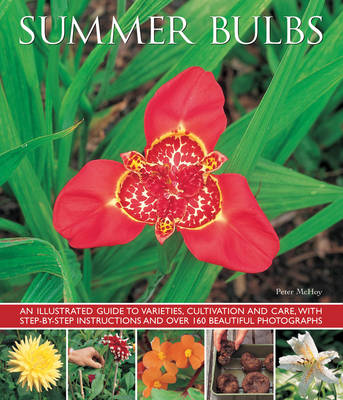 Picture of Summer bulbs: An Illustrated Guide to Varieties, Cultivation and Care, with Step-by-step Instructions and Over 160 Beautiful Photographs