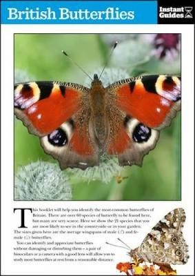 Picture of British Butterflies: The Instant Guide