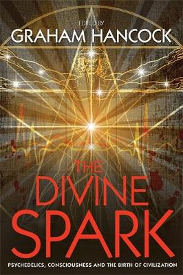 Picture of The Divine Spark: Psychedelics, Consciousness and the Birth of Civilization