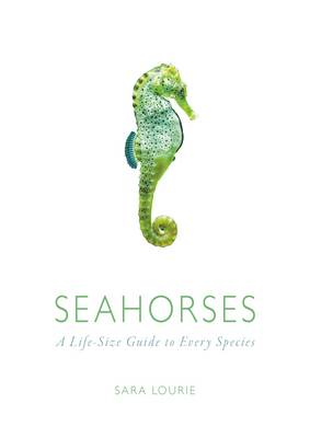 Picture of Seahorses: A Life-Size Guide to Every Species
