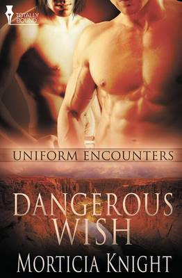 Picture of Uniform Encounters: Dangerous Wish