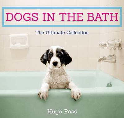 Picture of Dogs in the Bath