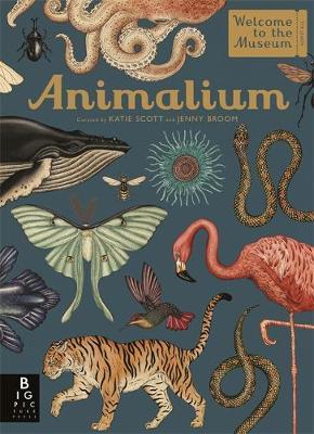 Picture of Animalium