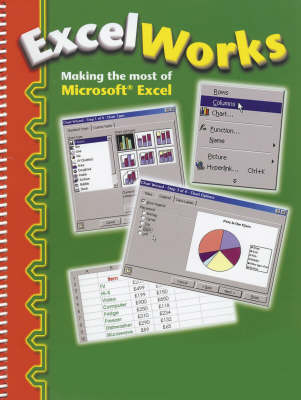 Picture of Excel Works: Making the Most of Microsoft Excel