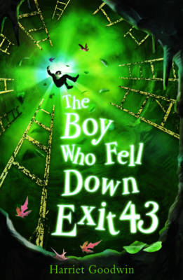 Picture of The Boy Who Fell Down Exit 43